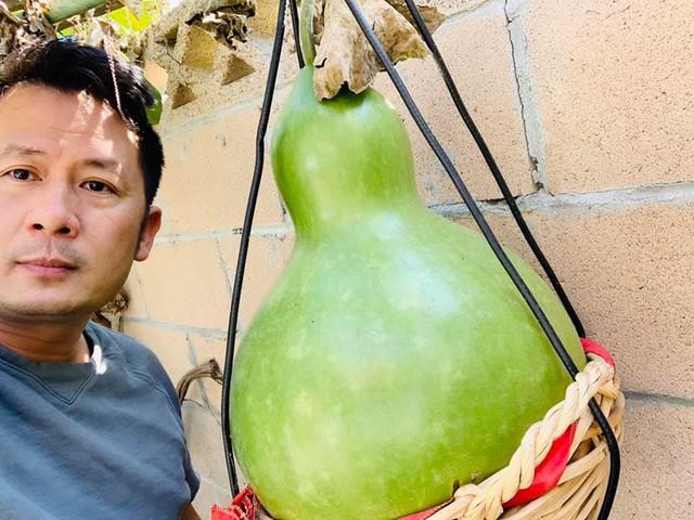 'Lóa mắt' với vườn cây sai trĩu quả của Bằng Kiều ở Mỹ ảnh 11