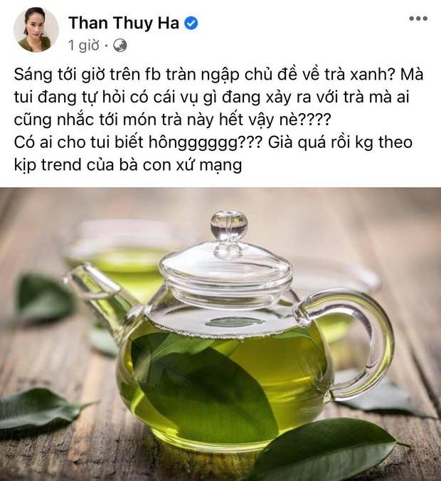 Loạt sao Việt bắt trend 'trà xanh' đầy ẩn ý ảnh 7