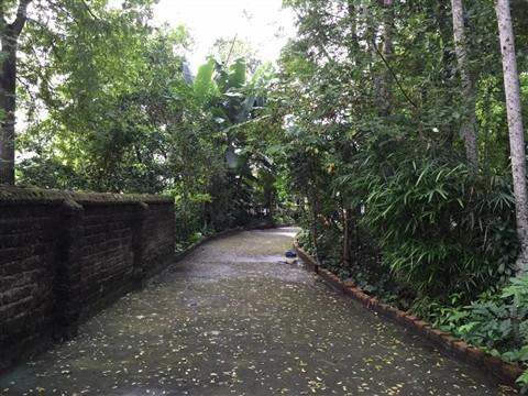 Thăm nhà 'cha đẻ' của Tám Bính và Năm Sài Gòn ảnh 2