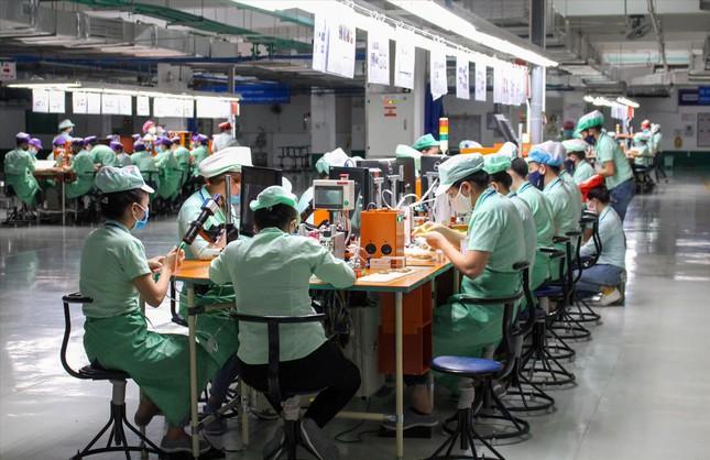 Kinh tế Ðà Nẵng đóng băng do dịch COVID-19 ảnh 1