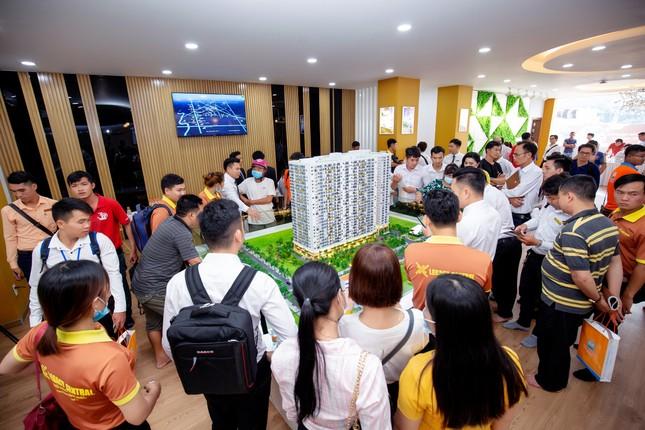 Kim Oanh Group vững bước sau chiến lược tái cơ cấu ảnh 4