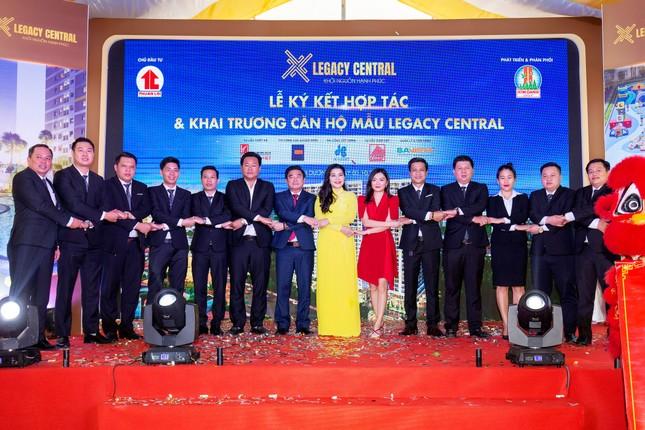 Kim Oanh Group vững bước sau chiến lược tái cơ cấu ảnh 2
