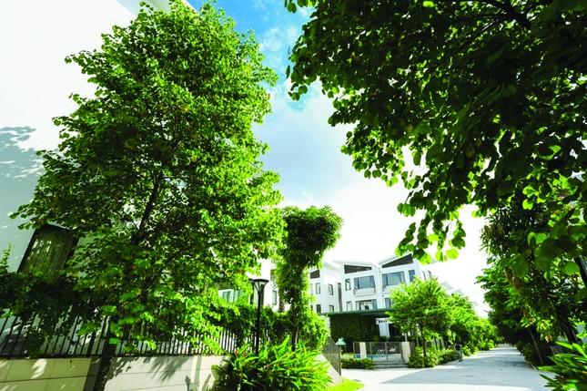 Cơ hội cuối sở hữu biệt thự phiên bản giới hạn Khai Sơn Hill ảnh 2