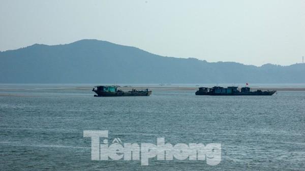 Dân phản đối đại dự án khai thác cát biển vùng biên: Tỉnh Quảng Ninh nói gì? ảnh 2