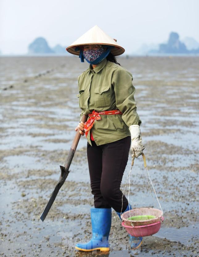 Cuộc sống của những phụ nữ săn 'sâm đất' ảnh 1