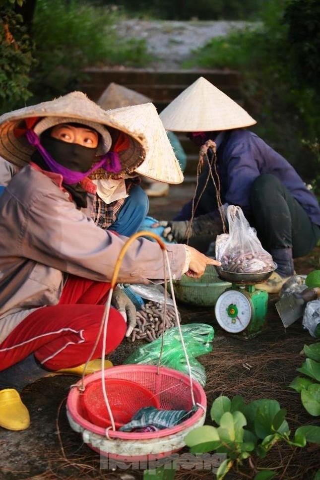 Cuộc sống của những phụ nữ săn 'sâm đất' ảnh 7