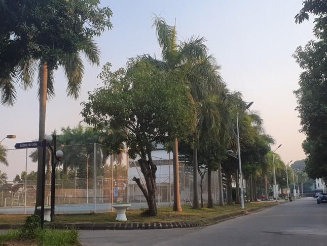 Vụ 'treo' hợp đồng mua nhà: Cục Thuế áp dụng cưỡng chế chủ dự án Long Việt Riverside ảnh 1