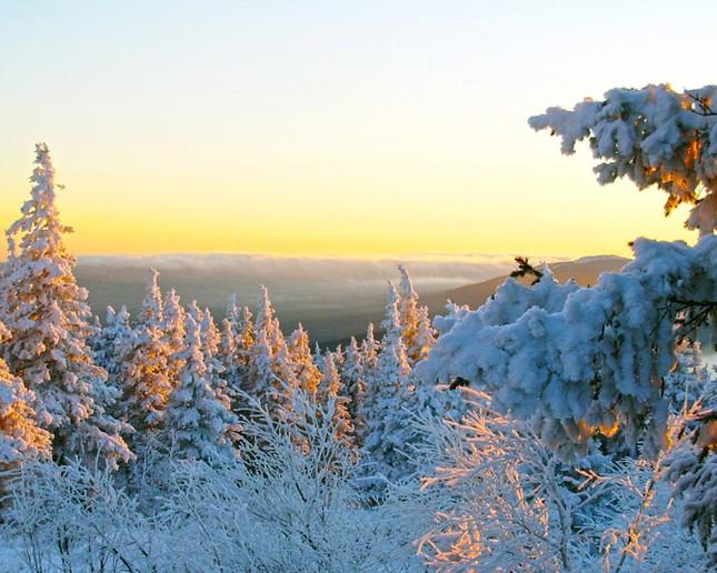Truyện cổ tích mùa đông ảnh 5
