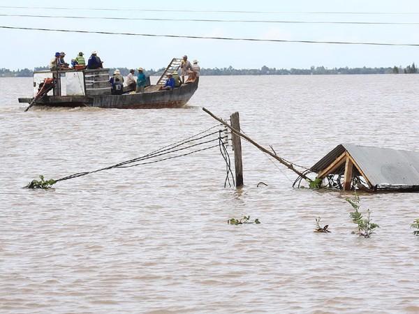 Một khu vực gần sông Tiền ở huyện Hồng Ngự (Đồng Tháp) chìm sâu trong nước lũ
