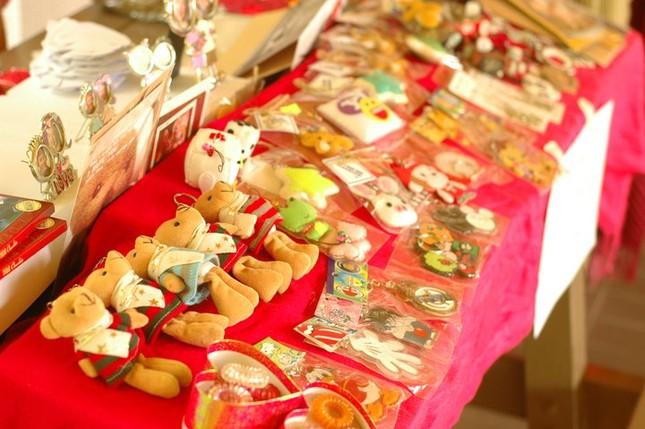 VNJUMP2011-Singapore-gian hàng của VNJUMP tại NUS gây quỹ cho chương trình
