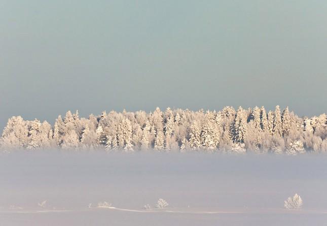 Truyện cổ tích mùa đông ảnh 4