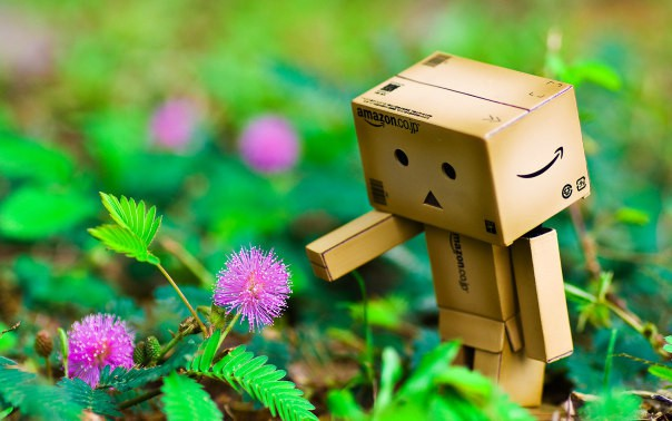 Thế giới cảm xúc của robot Danbo ảnh 1