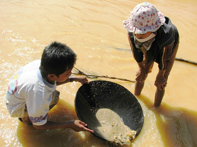 Hai anh em nhỏ xã A Tiêng (Tây Giang) hì hục đào đãi vàng bên dòng suối đục ngầu