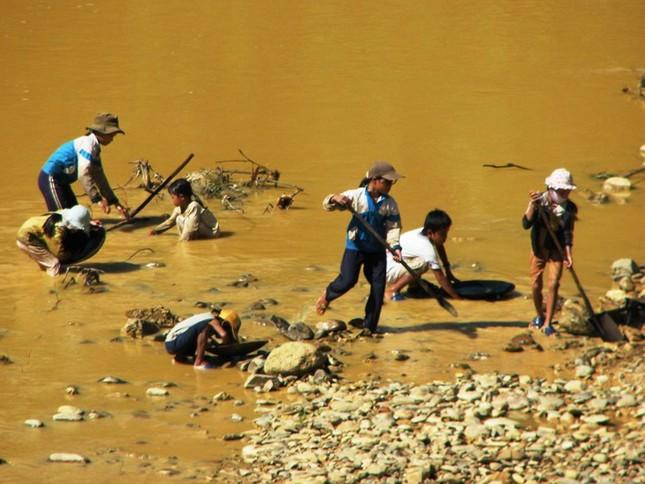 Những đứa trẻ đang hì hục đào đãi bên dòng sông Vàng (xã Tư, Đông Giang, Quảng Nam). Ảnh: Nguyễn Huy