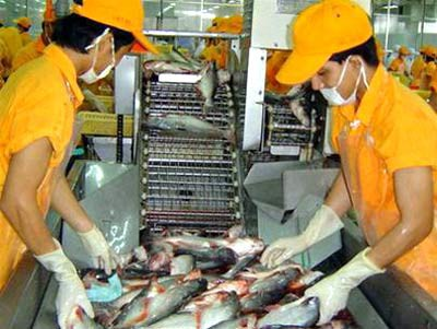 Cá tra Việt Nam ra khỏi danh sách đỏ của WWF tại châu Âu ảnh 1