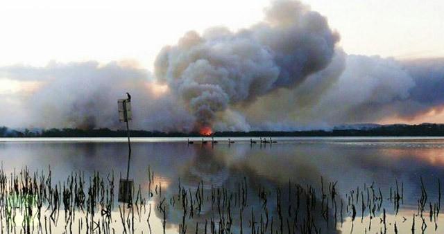 Những đám cháy lớn ở Green Point, New South Wales