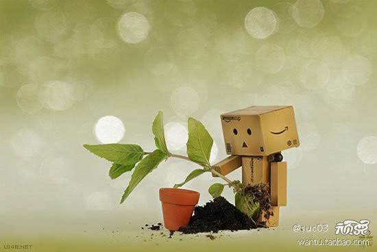 Thế giới cảm xúc của robot Danbo ảnh 10