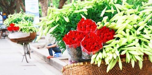 Loài hoa mang dấu ấn tình yêu Hà Nội ảnh 3