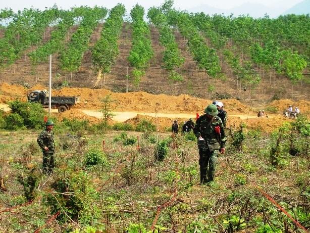 Mỹ hỗ trợ nạn nhân bom mìn Việt Nam ảnh 1