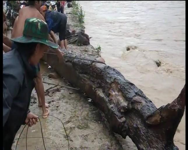 Hàng trăm người lao ra giữa dòng nước xiết vớt củi ảnh 3