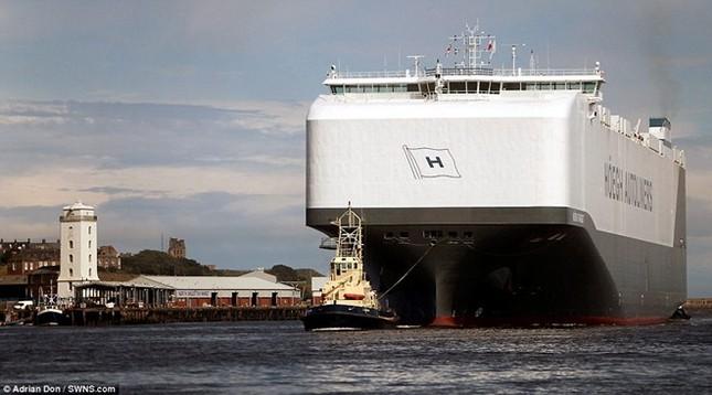 Choáng ngợp trước tàu chở ôtô lớn nhất thế giới ảnh 3