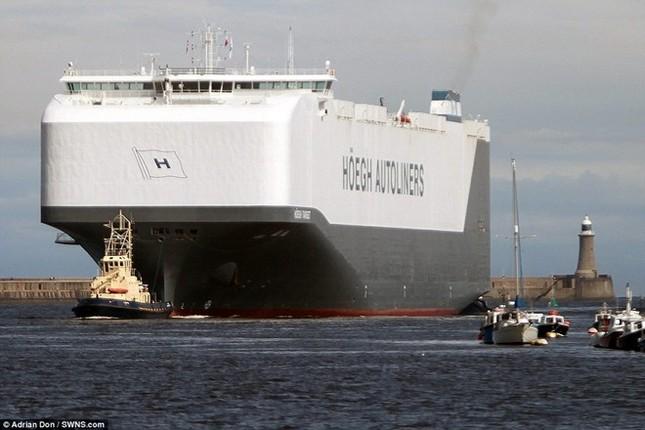 Choáng ngợp trước tàu chở ôtô lớn nhất thế giới ảnh 5