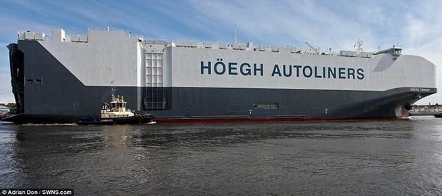 Choáng ngợp trước tàu chở ôtô lớn nhất thế giới ảnh 7