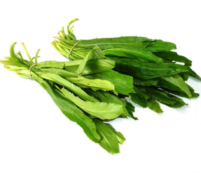 9 loại cây trồng trong nhà làm gia vị và thuốc chữa bệnh ảnh 2
