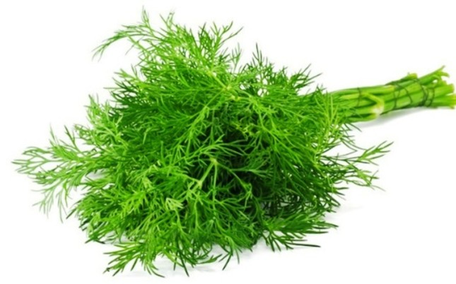 9 loại cây trồng trong nhà làm gia vị và thuốc chữa bệnh ảnh 4