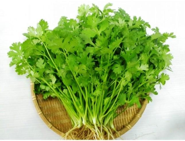 9 loại cây trồng trong nhà làm gia vị và thuốc chữa bệnh ảnh 7