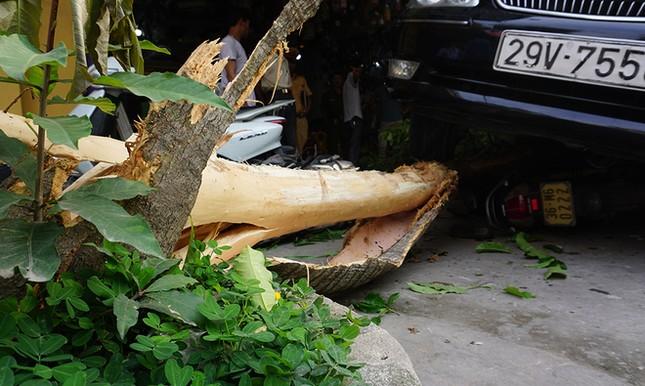 Xe Camry lùi trúng 8 ôtô, xe máy ảnh 5