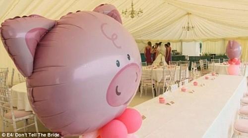 Chú rể thuê 50 con lợn làm nhân chứng lễ cưới và cái kết đắng ảnh 4