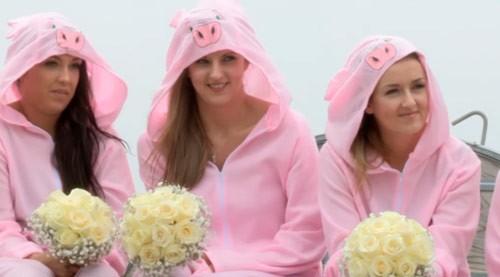 Chú rể thuê 50 con lợn làm nhân chứng lễ cưới và cái kết đắng ảnh 5