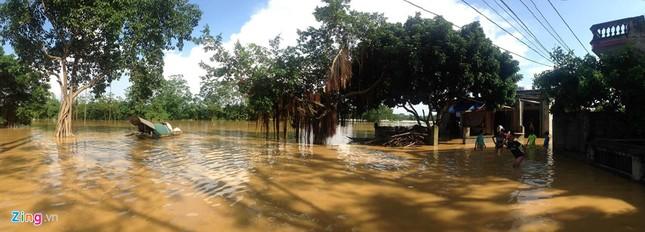 Làng biến thành 'sông' sau khi nước lũ tràn qua đê ảnh 10