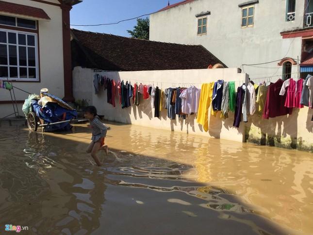 Làng biến thành 'sông' sau khi nước lũ tràn qua đê ảnh 11