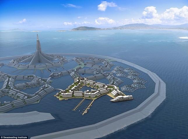 'Cha đẻ' Paypal xây thành phố nổi đầu tiên thế giới ảnh 3