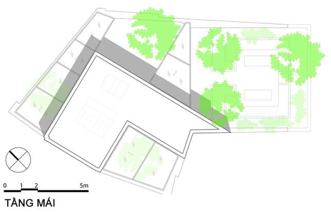 Nhà phố giống như ốc đảo xanh ở Nha Trang ảnh 17