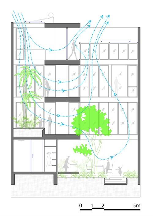 Nhà phố giống như ốc đảo xanh ở Nha Trang ảnh 18