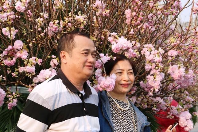 Hoa anh đào Nhật Bản làm say lòng người dân Hải Phòng ảnh 12