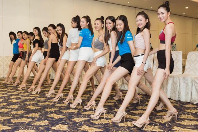Dolly Shoes – thương hiệu giày thiết kế của các cuộc thi hoa hậu danh giá ảnh 4
