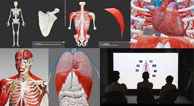 Đến Đại học Duy Tân học ngành Bác sĩ Răng-Hàm-Mặt ảnh 2