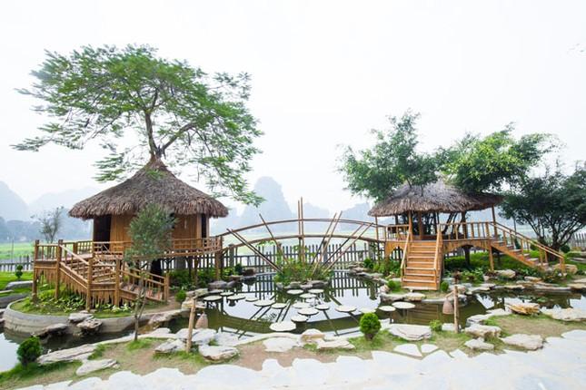 Hang Múa: Từ sen tới lúa, nhà trên cây hút du khách ảnh 4