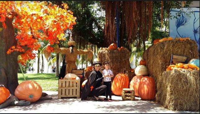 """Choáng với """"siêu bảo tàng"""" bí ngô của Vinpearl trong mùa Halloween ảnh 1"""