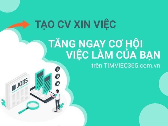 Timviec365.com.vn có thật là địa chỉ việc làm – tuyển dụng uy tín? ảnh 2