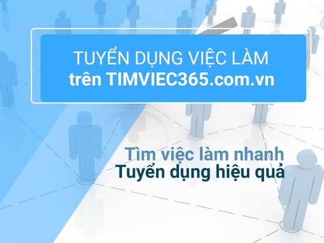 Timviec365.com.vn có thật là địa chỉ việc làm – tuyển dụng uy tín? ảnh 3