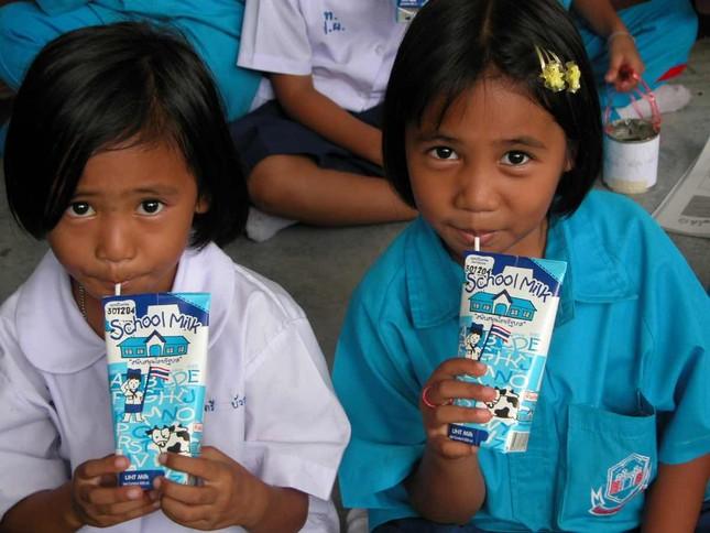 Sữa học đường đã có tiêu chuẩn chính thức ảnh 4
