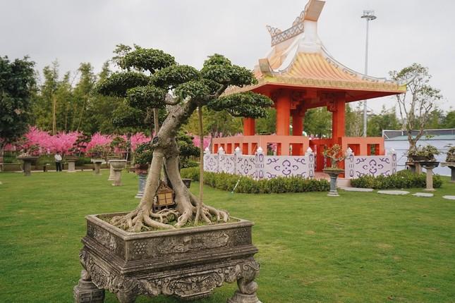 Lạc lối giữa xứ Phù tang tại lễ hội hoa xuân Vinhomes Smart City ảnh 1