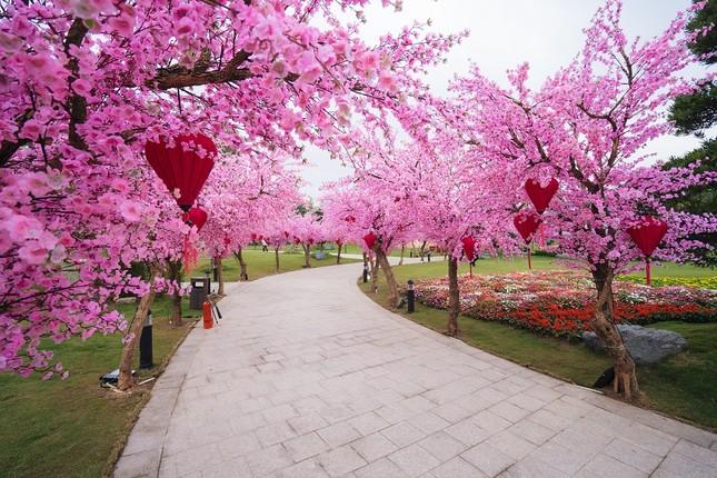 Lạc lối giữa xứ Phù tang tại lễ hội hoa xuân Vinhomes Smart City ảnh 2
