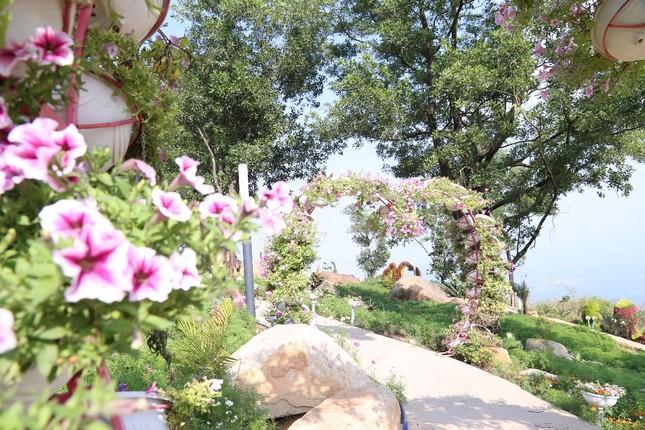 Ngừng đón khách, KDL Núi Bà Đen vẫn đang thay đổi từng ngày, đẹp mê mẩn ảnh 1