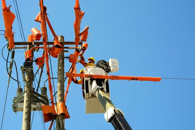 Nỗ lực đáp ứng nhu cầu điện phát triển kinh tế-xã hội khu vực phía Nam sau dịch COVID-19 ảnh 3
